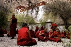 Tibet Explorer (1)